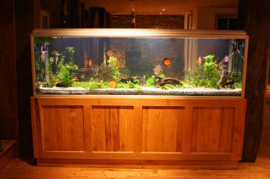 Aquarium Design By Teddyu0027s Tanks. Sophisticated Home ... Part 60